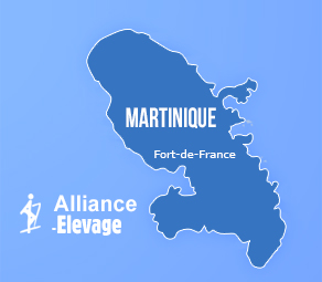 Alliance Pastorale Martinique